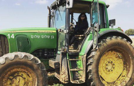 בשורה לחקלאים: תותר הצבת מבנים זמניים במשקי החקלאות